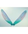 Blauwe insecten verkleed vleugels voor kinderen