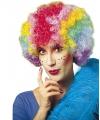 Clownspruik gekruld multikleuren voor dames
