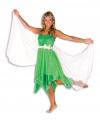 Elfjes jurk groen dames