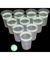 Glow in the dark beerpong drankspel
