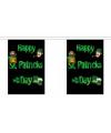 Polyester vlaggenlijn met St. Patricks day