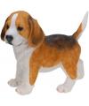 Beagle puppy beeldje staand 29 cm
