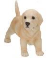 Labrador puppy beeldje staand 29 cm