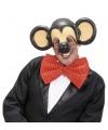 Voorhoofd en oren van een muis
