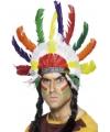 Indianentooi met veren