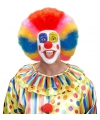 Gekleurde clownspruiken
