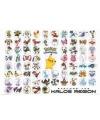 Pokemons soorten kinder posters