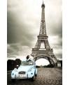 Parijs maxi poster 61 x 91,5 cm