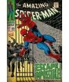 The Amazing spiderman poster 61 x 91,5 cm