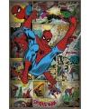 The amazing Spiderman poster retro 61 x91,5 cm