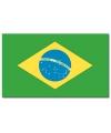 Braziliaanse vlag 90x150 cm