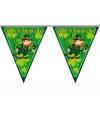 Themafeest vlaggenlijn St. Patricks Day